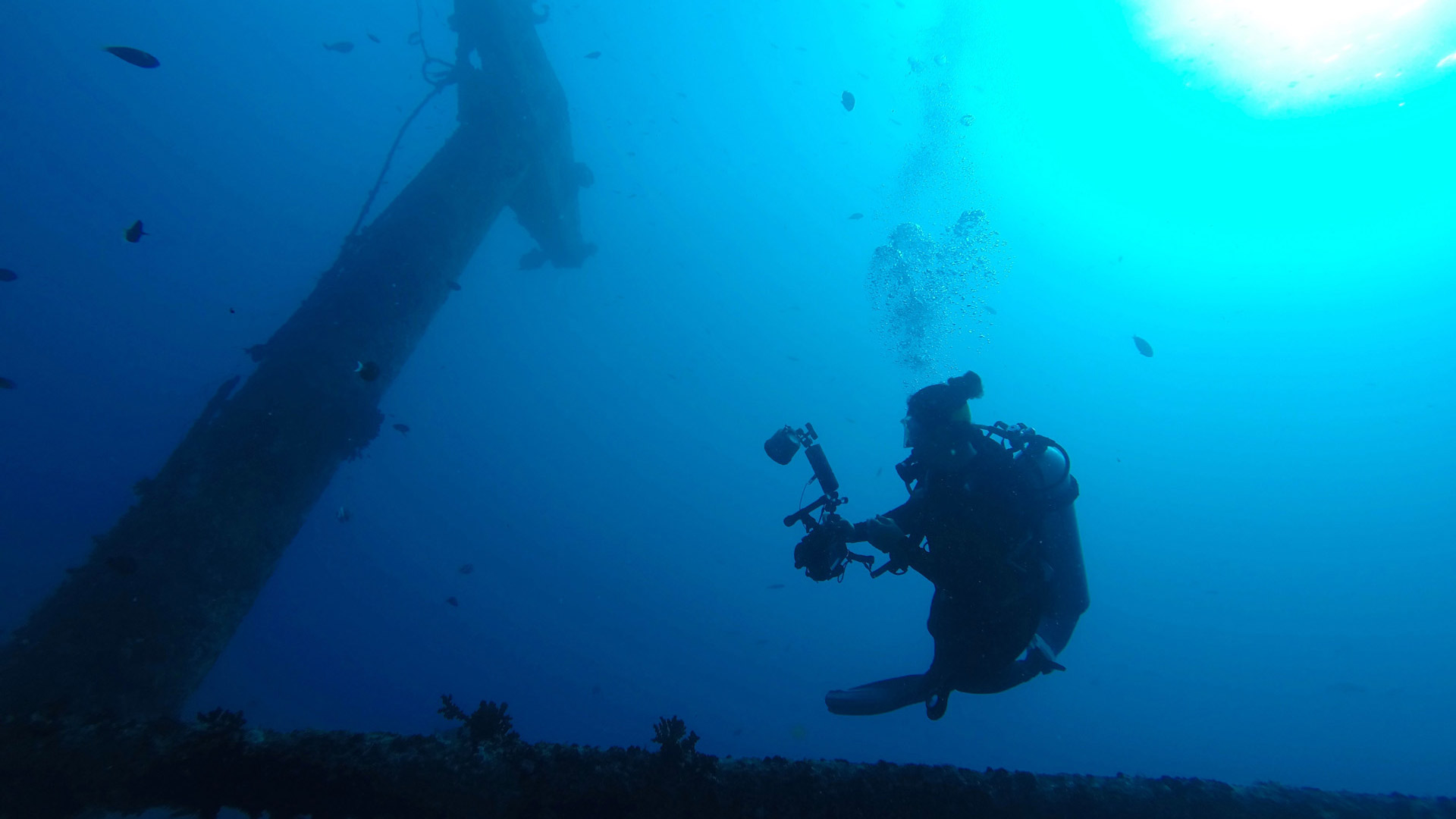 Maldive Victory wreck with diver Divemood