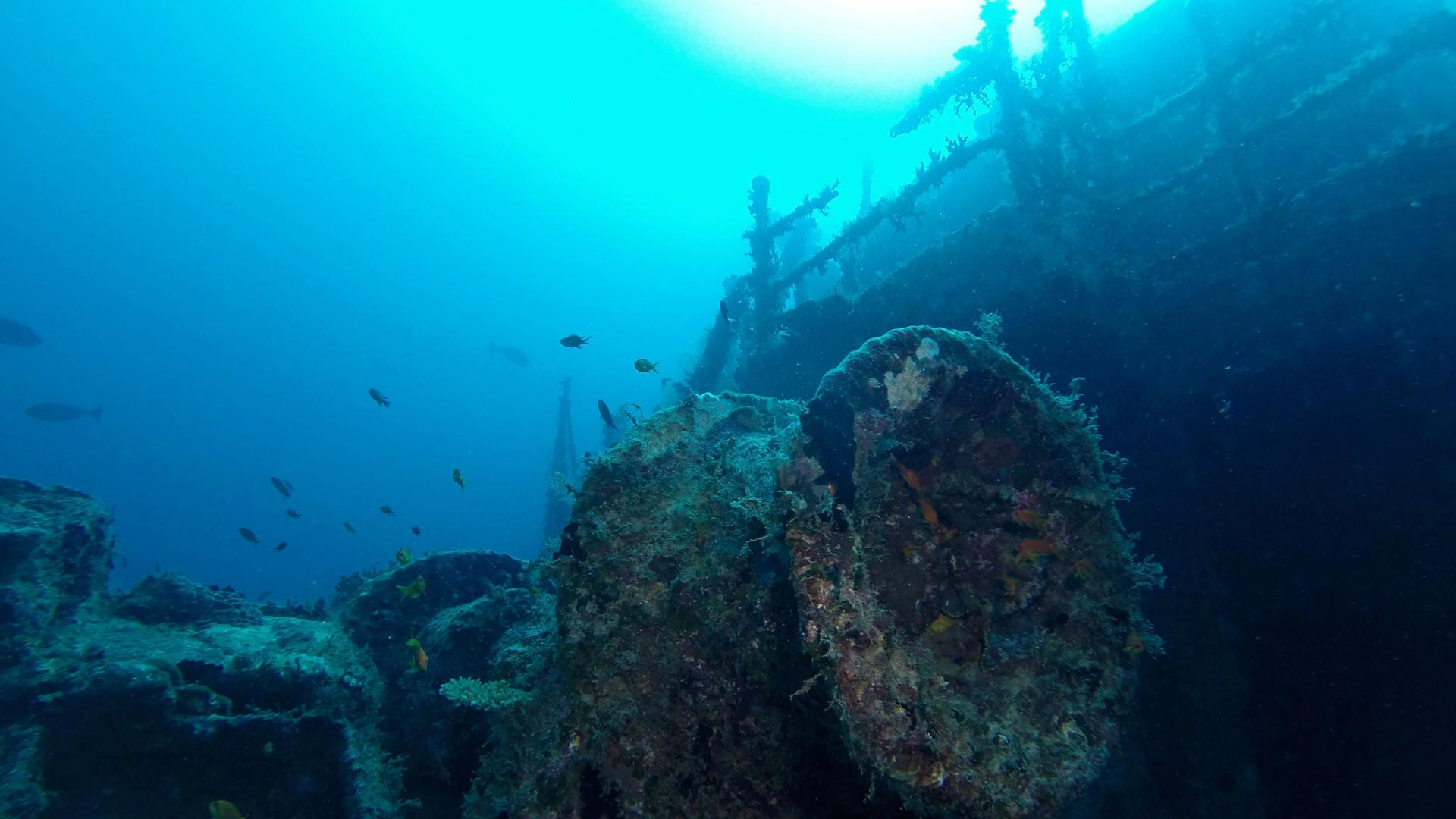 Wreck Victory Winch Maldives Diving