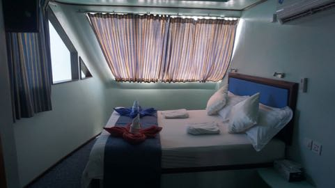 ari queen dive liveaboard maldives deluxe double thumb