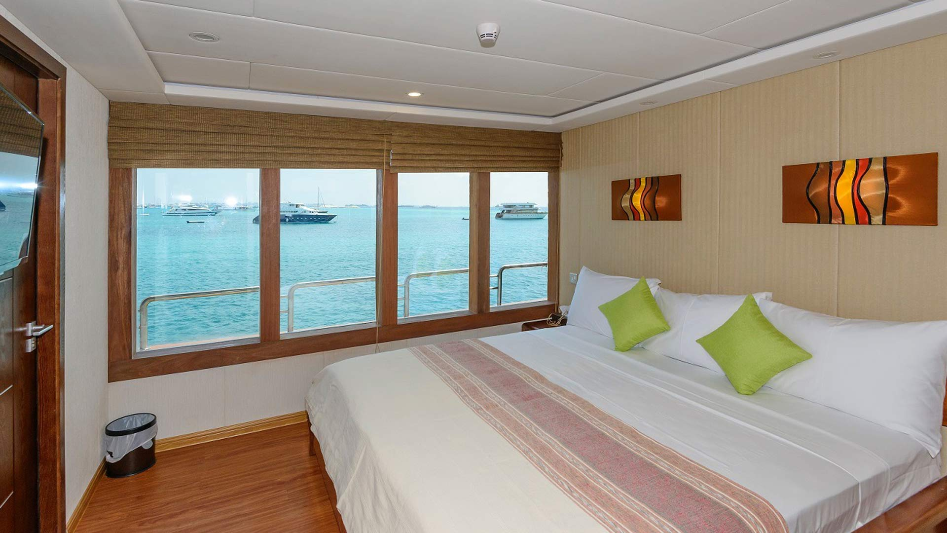 carpe novo dive liveaboard maldives junior suite
