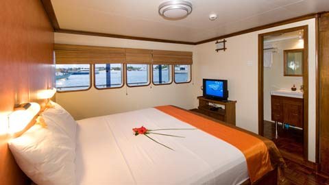 carpe vita dive liveaboard maldives superior cabin