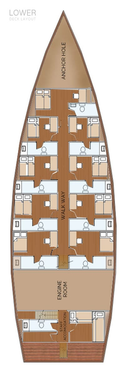 deck plan liveaboard stingray lowerdeck